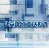 Выставки в Новоспасском